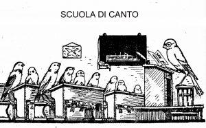 Scuola canto uccelli