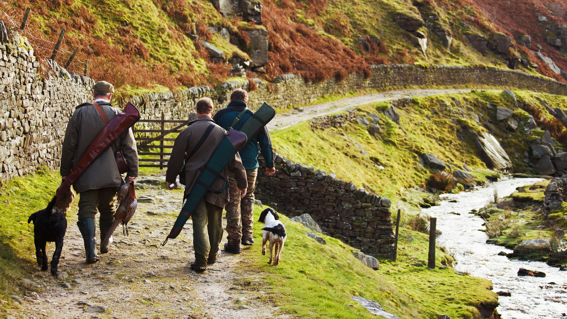Cacciatori con cani che vanno a caccia