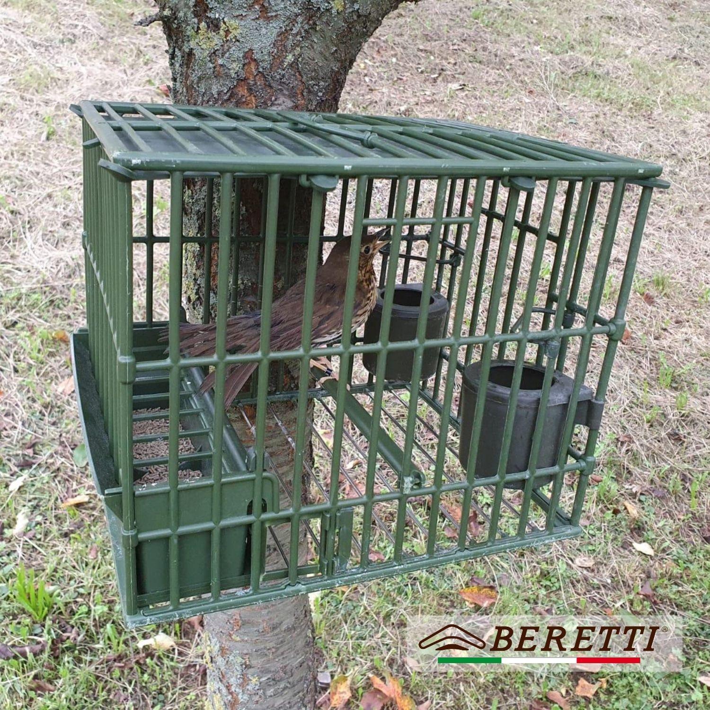 Gabbia tordo Beretti sull'albero