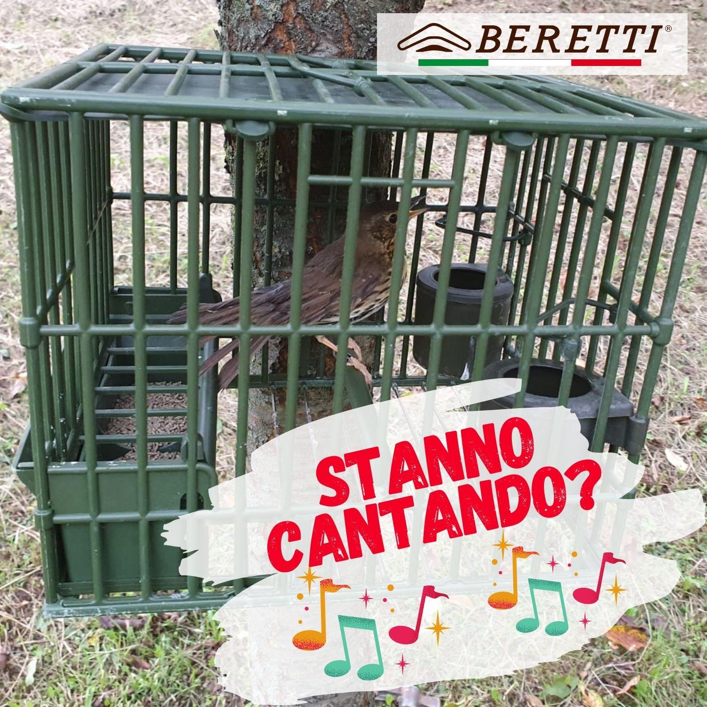 Gabbia Beretti con tordo
